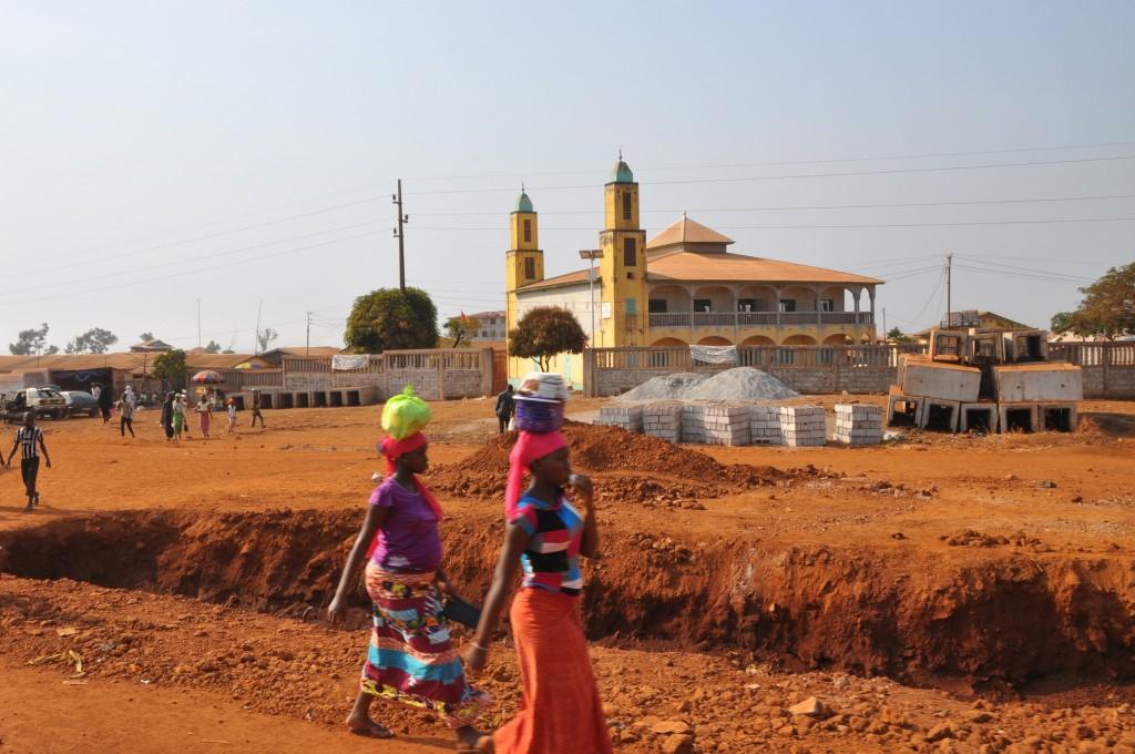 2017-01-28 Conakry-Kindia (27)