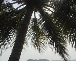 MEINE REISE NACH KOOLO HINDE/GUINEA (13)